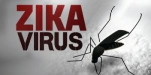 zika virus bucuresti