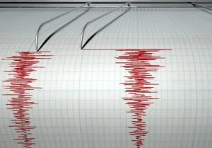 seism cutremur bucuresti