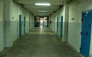 celule detinuti