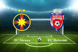 Liga I, etapa 17. Steaua - FC Botosani