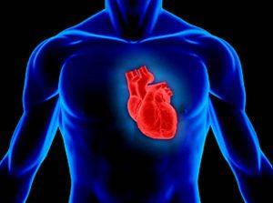 Viitorul omenirii sunt oamenii cu două inimi stiinta